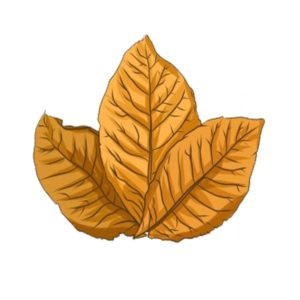 βιρτζινια καπνα για ηλεκτρονκο τσιγαρο με αρωμα απο ξυλωδεις νοτες κολιανδρου.